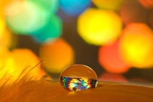 Disco drop by pqphotography