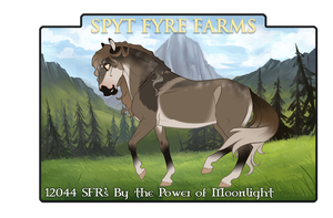 12044 SFR's By the Power of Moonlight by SpytFyre-Ranch