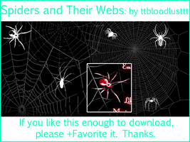 Spiders and their Webs by ttbloodlusttt
