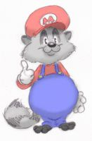 Raccoon Mario by ShoJoJim