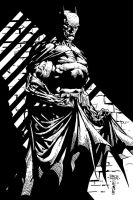 The Dark Knight Dave Finch ME by JamesLeeStone