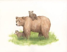 Brown Bear with Cubs by KGuenther
