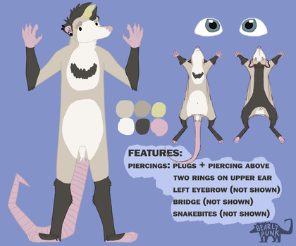 Ref Sheet by BearlyPunk