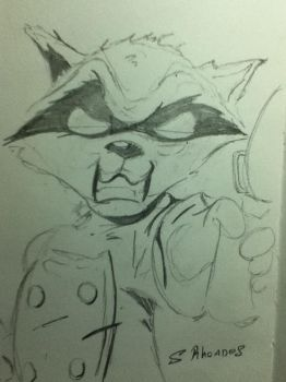 Rocket Raccoon by s-rhoades