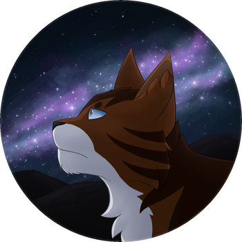 Starclan will guide me by Moon-feather