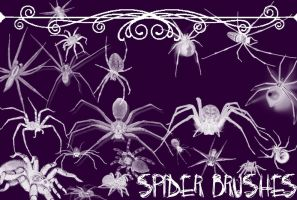 Spider Brushes by Gothic11Shadow