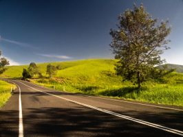 Road To Kenilworth by eye-of-tom