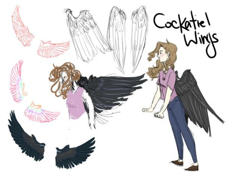 Wing Study by AdorablyDangerous