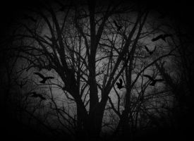 Ravens At My Funeral by spleen-of-silence
