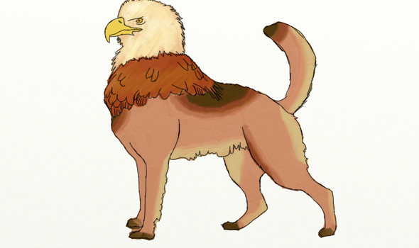 Gryphon color by clarasmith