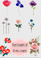 pack flowers #3 by andreakaisoo