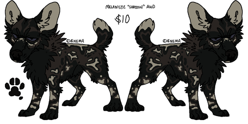Melanistic 'Shadow' AWD Adopt [SOLD] by 2852-8139-3580