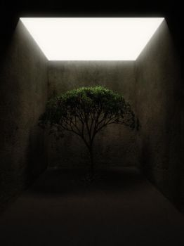 lonely tree 2 by DMRmrt