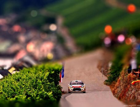WRC Citroen (tilt shift) by craft666
