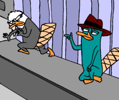 Agent P and Spy P - Competition at first sight by sonamyfire