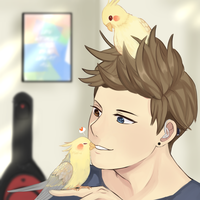 ::SOS:: Cockatiels by Hourglass34