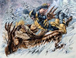 Wolverine vs. Sabretooth Stephen Segovia Pencils by bgreen907