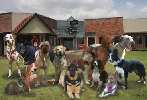 Real-Life Canis Springs Group Shot by FaithFirefly