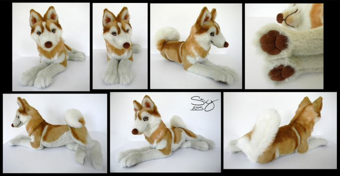 Siberian Husky Red by SarityCreations