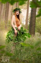 Forest fairy by papaja94