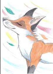 Colorful wind by FigoFox