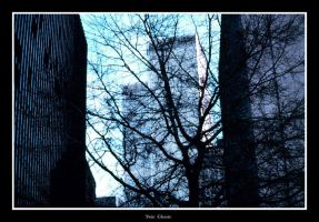 Ghost of the Twin Towers by carepa