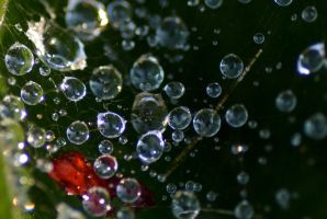 Just Some Drops by dorenna