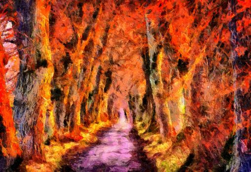 Enchanted Forest by montag451
