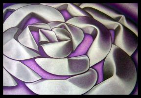 Tin petal purple by visionality