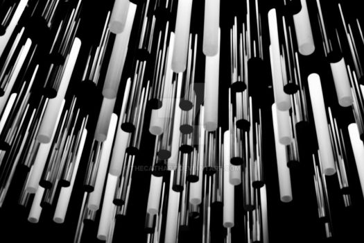 Lights in Black and White by TheCathArt