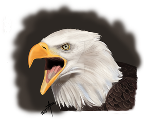 Eagle Digital Painting by ZaykoO