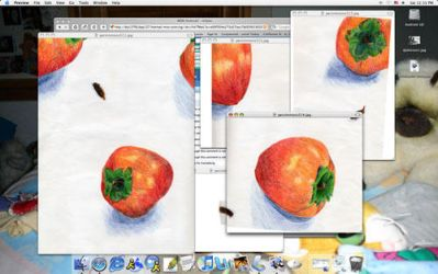 Desktop with Persimmons by sweet-suzume