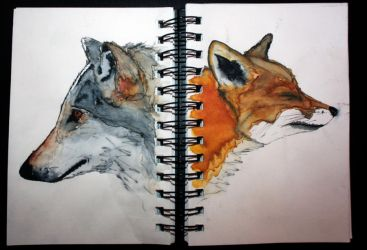 The wolf and Fox by vodoc