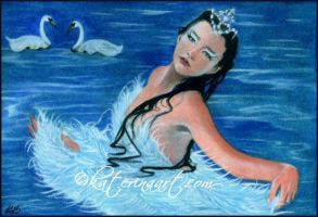 Swan Lake by Katerina-Art