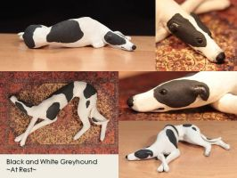 Black and White Greyhound: At Rest by Avocet21