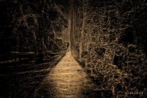 The dark alley by wiwaldi24