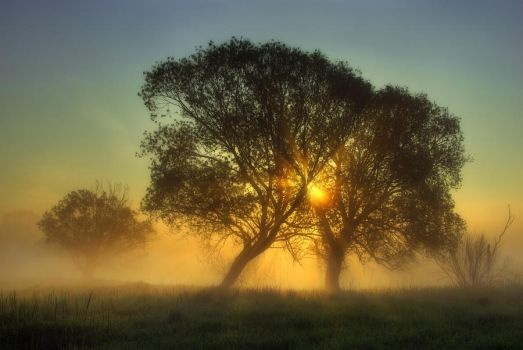 A Touch Of Dawn by jeremi12