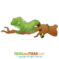 Lezard - Lizard FROGandTOAD by FROG-and-TOAD