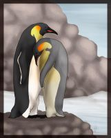 Penguins Can Be Lovebirds Too by BearsDen-Kennels