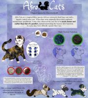 ClosedSpecies Introduction: AfroCats! by ChocolateQuill