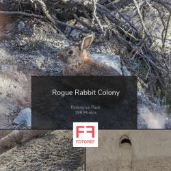 198 photos of Rogue Rabbit Colony by Fotoref