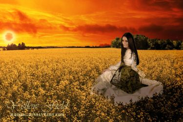 Yellow Field by marqjc