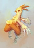 Combusken Second Sketch