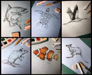 May Sketches Psdelux by psdeluxe