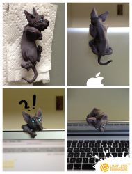 Sphynx Cat Camera Cover by LimitlessEndeavours