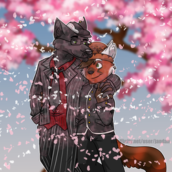 Among the Cherry Blossoms by Songficcer