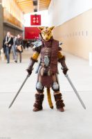 Don't mess with the Khajiit by LuceCosplay
