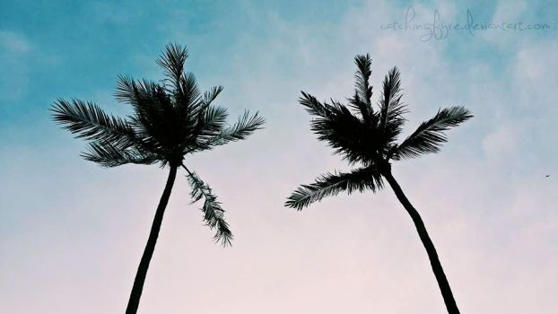 Twin Palms by catchingfyre