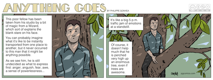 Anything Goes 032 - Way up on a tree branch by Quebecman