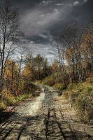 Autumns Road by HeatherWaller-Rivet